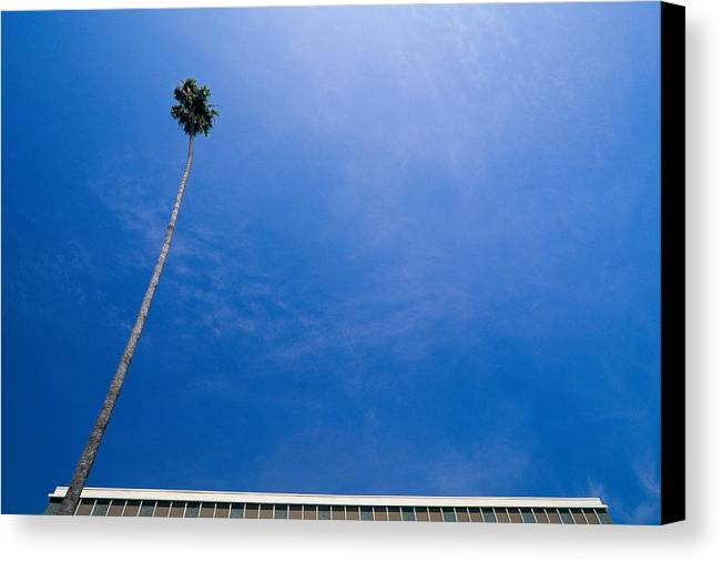Blue Sky Canvas Print featuring the photograph Palm Tree And Building by Rich Iwasaki