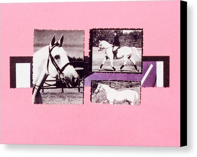 Horses Canvas Print featuring the photograph Horse And Rider C by Mary Ann Leitch