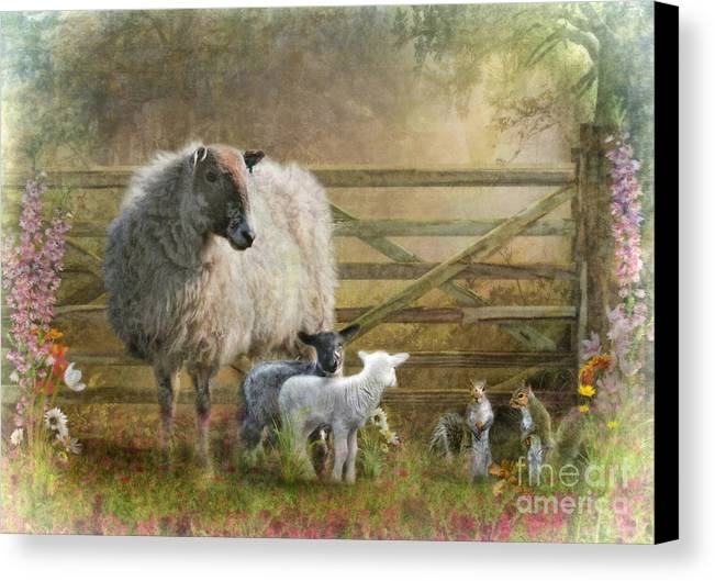 Sheep Canvas Print featuring the digital art By The Gate by Trudi Simmonds
