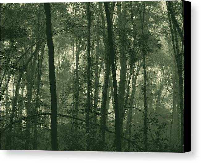Fog.trees Canvas Print featuring the photograph Foggy Morning by Mary Anne Williams