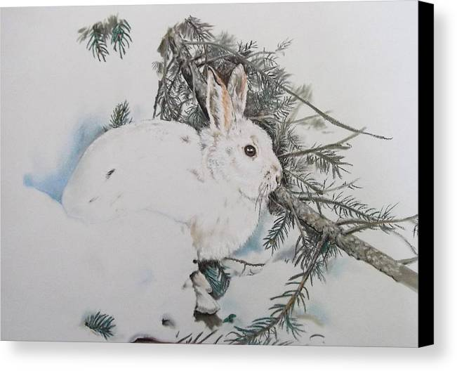 Winter Time Snowshoe Rabbit (bunny Canvas Print featuring the pastel Blending In by Turea Grice