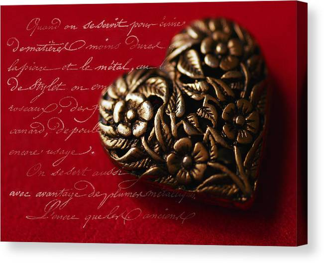 Heart Canvas Print featuring the photograph Please Be My Love by Janet Lee