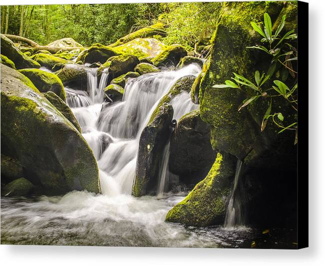 Landscape Canvas Print featuring the photograph Great Smoky Mountains Tn Roaring Fork Motor Nature Trail Waterfall by Robert Stephens