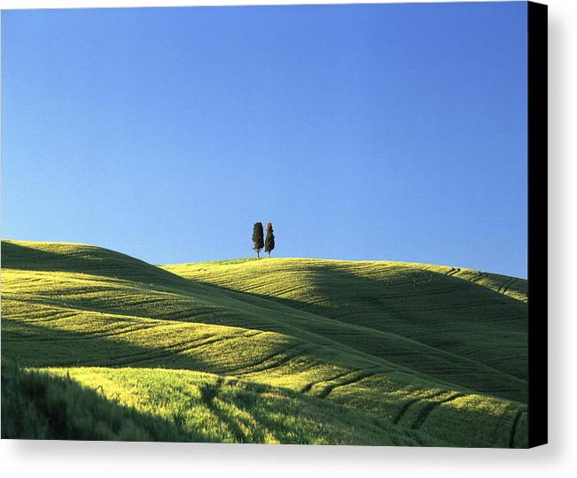 Tuscany Canvas Print featuring the photograph Tuscan Evening by Michael Hudson