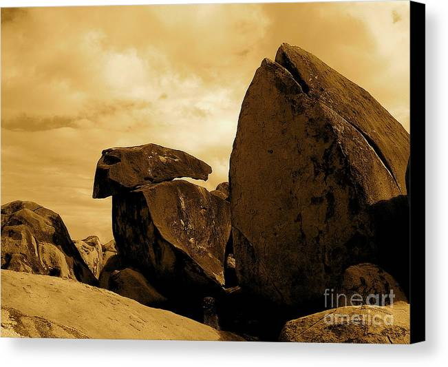 Rocks Canvas Print featuring the photograph Whale Wolf And Turtle by Sergio Geraldes