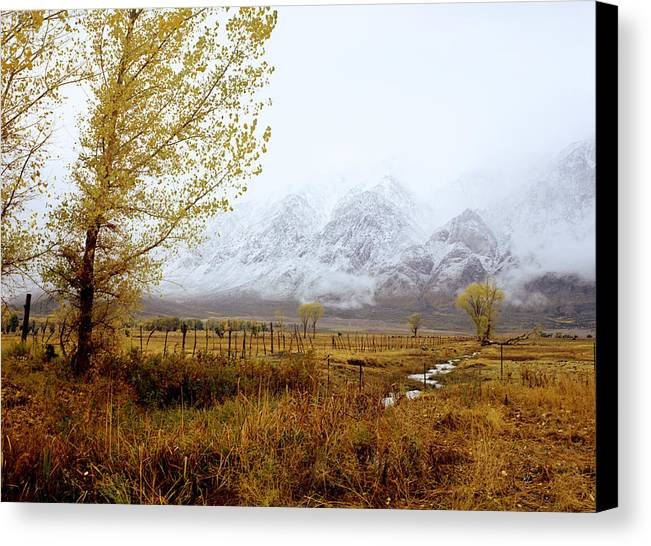 Autumn Canvas Print featuring the photograph Autumn In Lone Pine by John Wolf