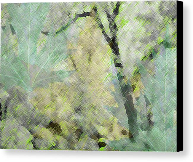 Leaves Canvas Print featuring the photograph Lover's Desire by Katriel Jean-Baptiste
