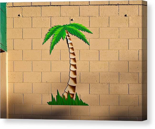 Palm Tree Canvas Print featuring the photograph Palm Tree Sign by Rich Iwasaki