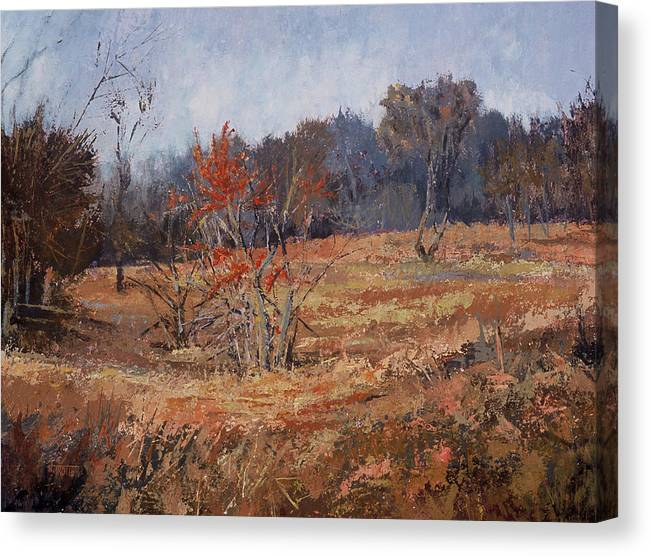 Landscape Canvas Print featuring the painting November Jewels by Jimmie Trotter