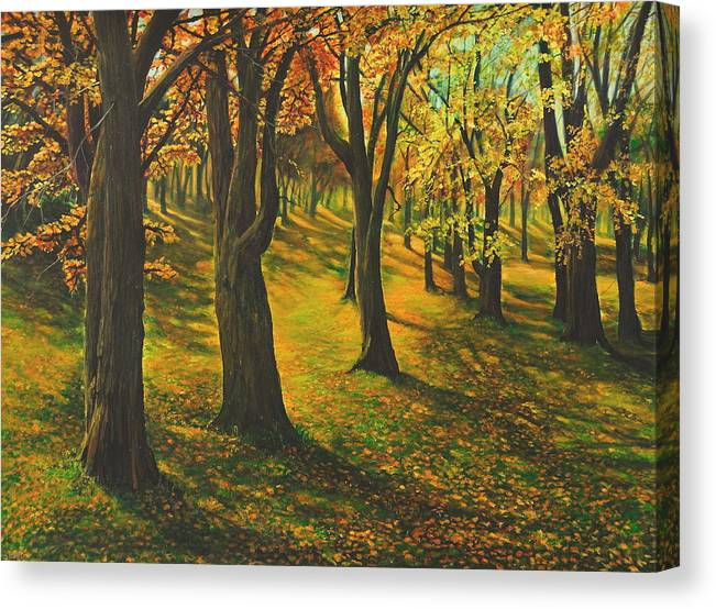 Landscape Canvas Print featuring the painting The Plains Of Abraham by Craig shanti Mackinnon