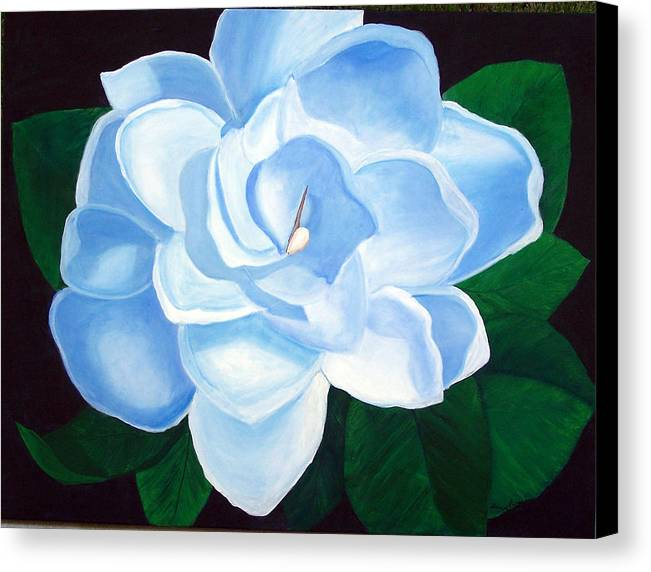 Flowers Canvas Print featuring the painting Blue Gardinia by Marcia Paige