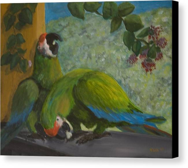 Birds Canvas Print featuring the painting Garden Parrots by Anita Wann