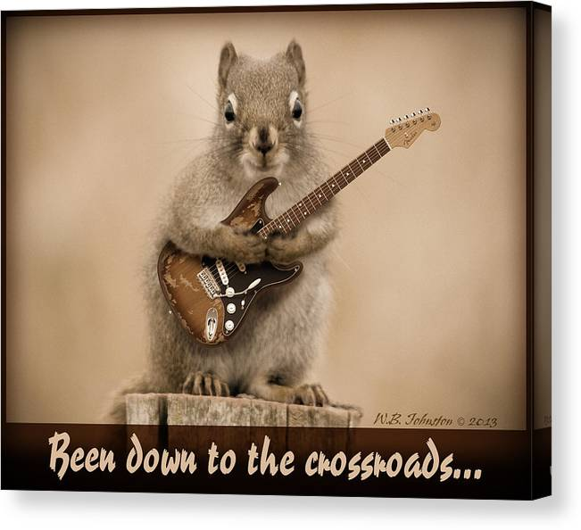 Squirrel Canvas Print featuring the photograph Crossroads by WB Johnston