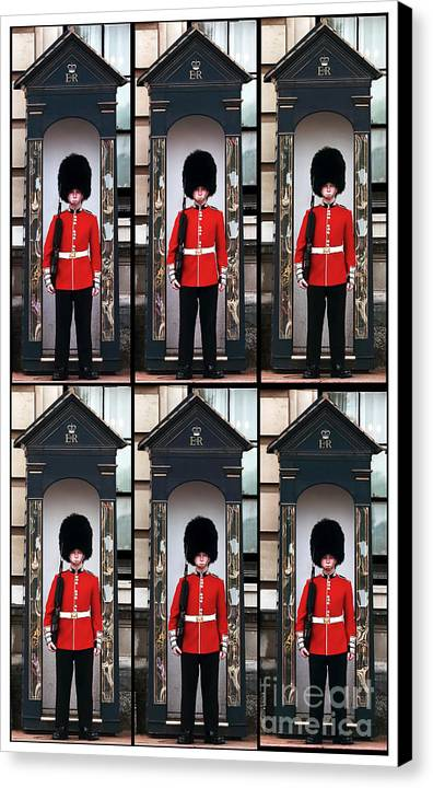 Portrait Of A Sleepy Guard Canvas Print featuring the photograph Portrait Of A Sleepy Guard by John Rizzuto