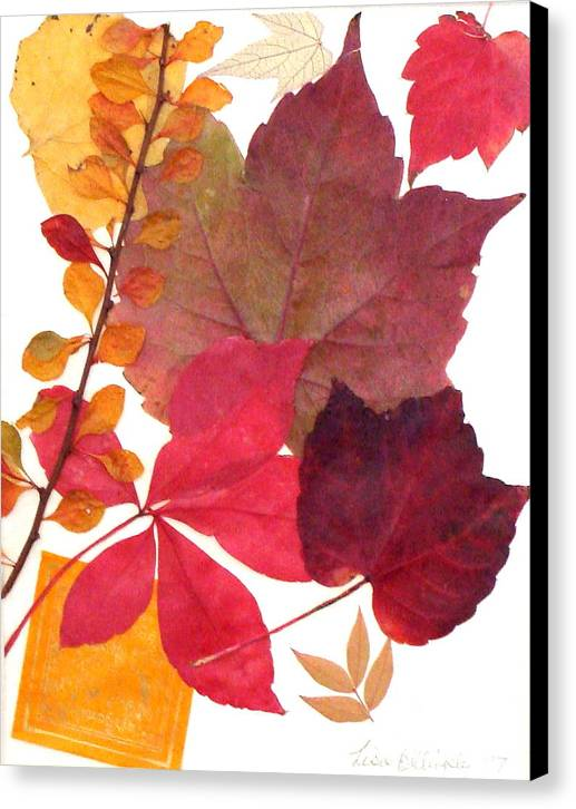 Fall Canvas Print featuring the mixed media My Colors by Lisabeth Billingsley