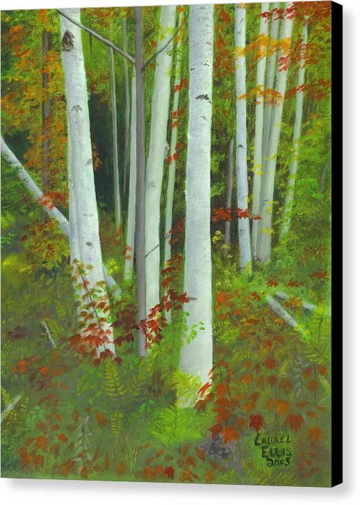 Landscape Canvas Print featuring the painting Autumn Birches by Laurel Ellis