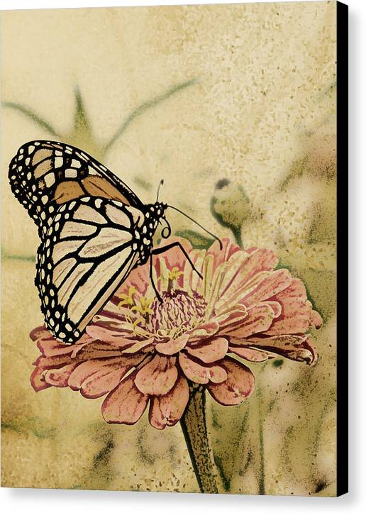 Butterfly Canvas Print featuring the digital art Painted Beauty by Sally Engdahl