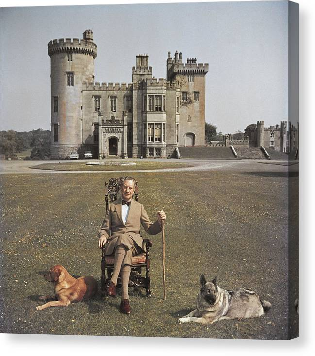 Pets Canvas Print featuring the photograph Baron Inchiquin by Slim Aarons