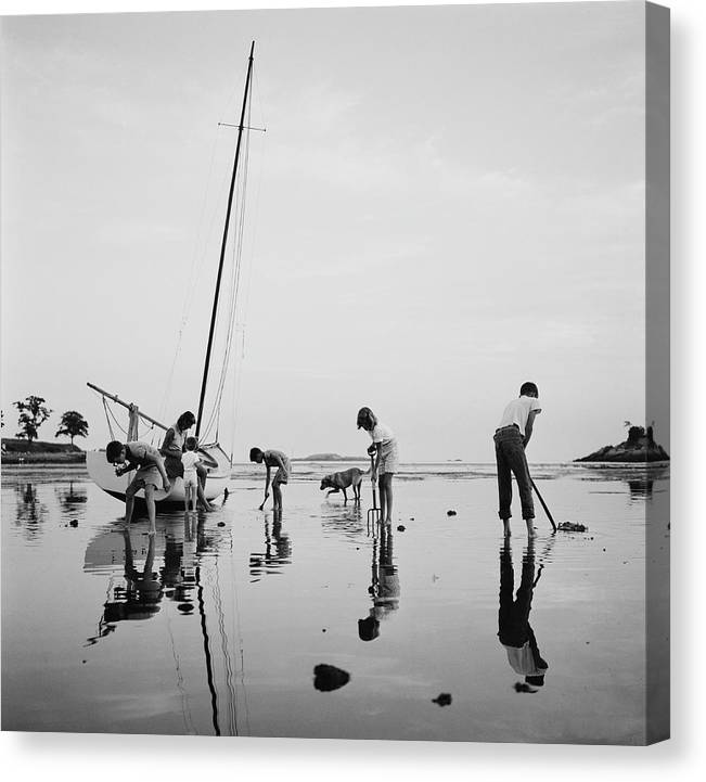 Leverett Saltonstall Canvas Print featuring the photograph Digging For Clams by Slim Aarons