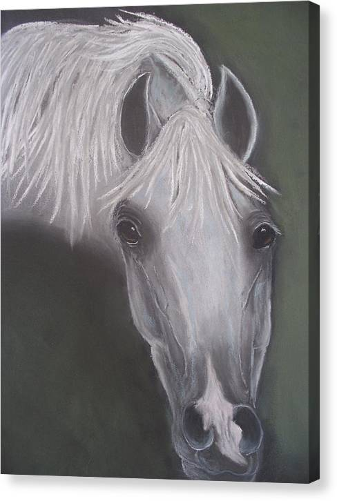 Animal Canvas Print featuring the painting Dreams by Diana Cochran