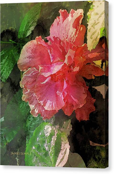 Bliss Canvas Print featuring the digital art Bliss by James Temple
