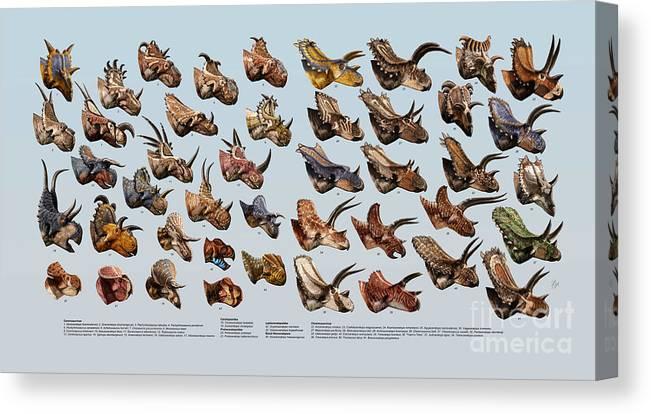 Dinosaur Canvas Print featuring the digital art Ceratopsian Cornucopia by Julius Csotonyi