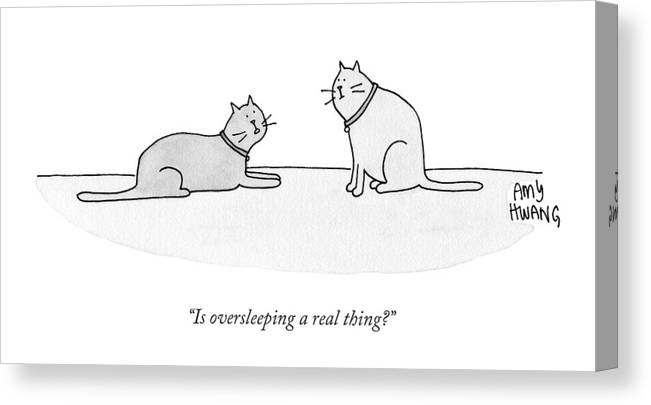 Cat Canvas Print featuring the drawing Is Oversleeping A Real Thing? by Amy Hwang