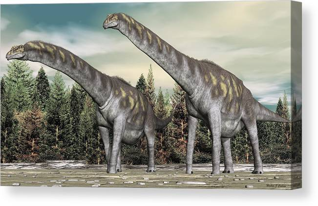 Argentinosaurus Canvas Print featuring the digital art Argentinosaurus by Walter Colvin