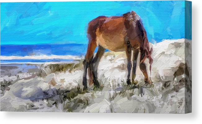 Cumberland Island Pony Horse Canvas Print featuring the digital art Cumberland Pony by Scott Waters