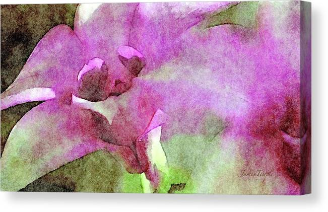 Visions Of Violet Canvas Print featuring the digital art Visions of Violet by James Temple