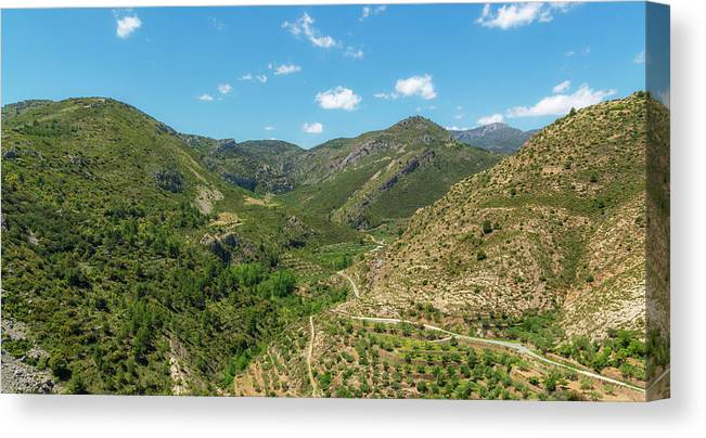 Pine Canvas Print featuring the photograph Mountains Around Bejis In Castellon by Vicen Photography
