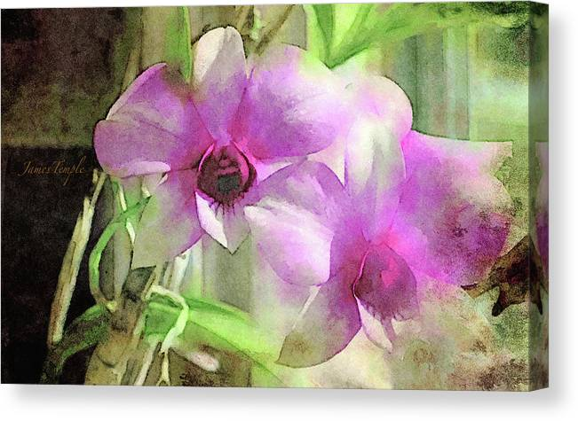Orchids Canvas Print featuring the digital art Harmony by James Temple