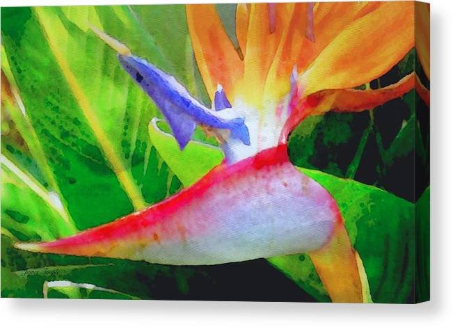 Bird Of Paradise Canvas Print featuring the digital art Natural High by James Temple