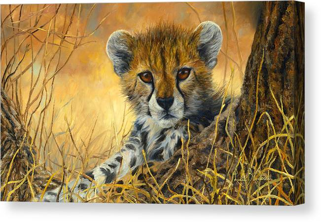 Cheetah Canvas Print featuring the painting Baby Cheetah by Lucie Bilodeau