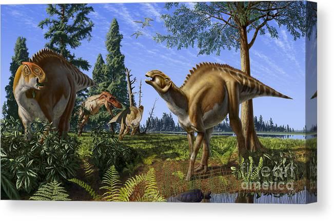 Dinosaur Canvas Print featuring the digital art Brachylophosaurus canadensis by Julius Csotonyi