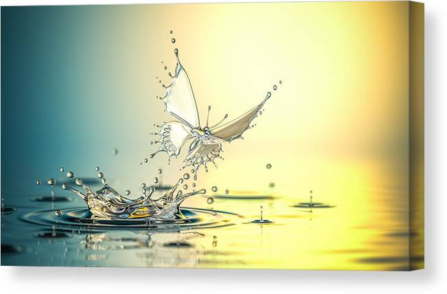 Spray Canvas Print featuring the photograph New Life by Blackjack3d