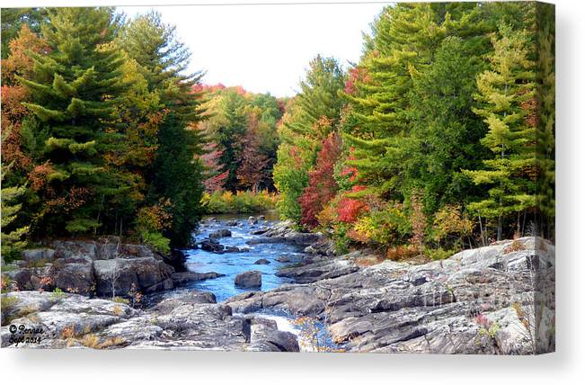 Landscape Canvas Print featuring the photograph September Days by Rennae Christman