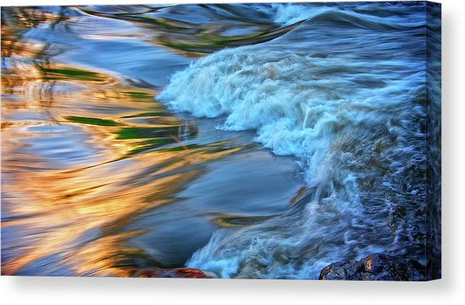 Nature Canvas Print featuring the photograph Cool Liquid Gold by Zayne Diamond Photographic