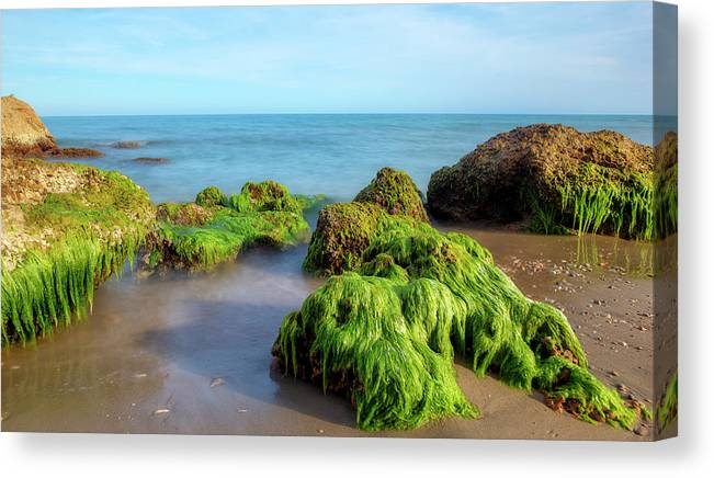 Lonely Canvas Print featuring the photograph The Coast Of Alcocebre On The Costa Azahar Coast Of Castellon by Vicen Photography