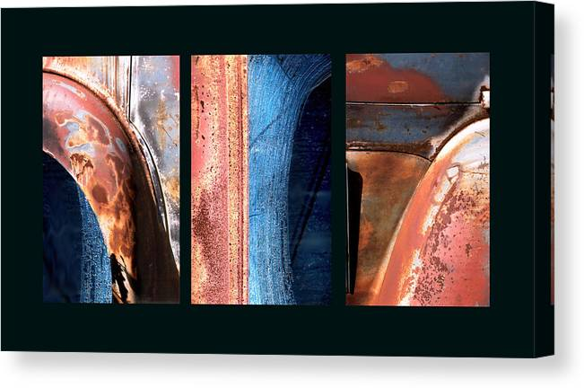 Abstract Canvas Print featuring the photograph Ole Bill by Steve Karol