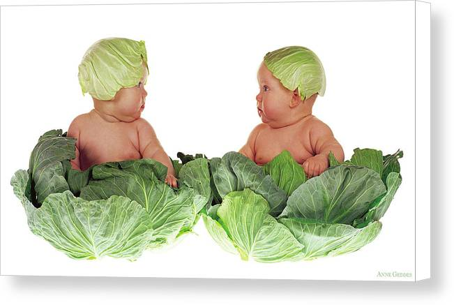 Cabbage Kids by Anne Geddes