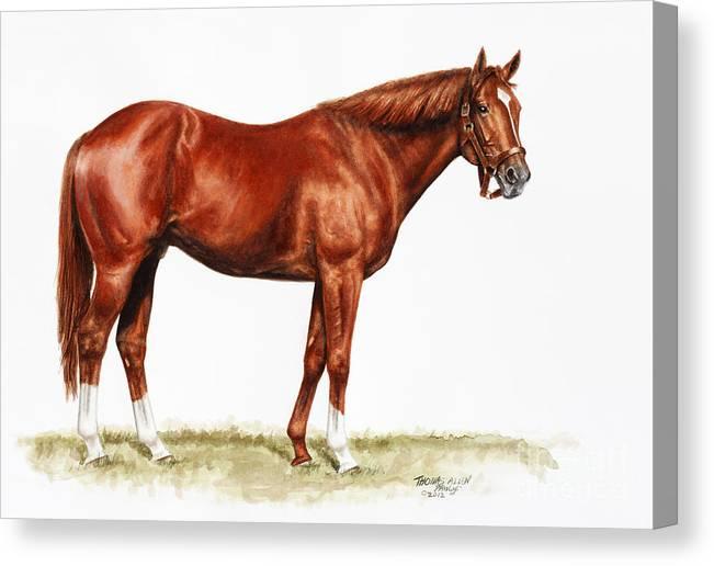 Secretariat Canvas Print featuring the painting Secretariat Study by Thomas Allen Pauly