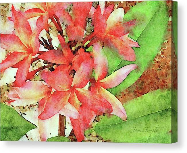 Plumeria Canvas Print featuring the digital art Autumn Plumeria by James Temple