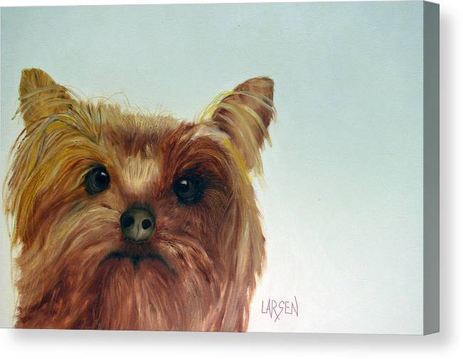 Canvas Print featuring the painting Yorkshire Terrier by Dick Larsen