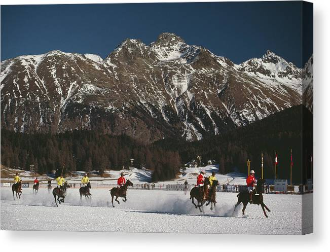 Horse Canvas Print featuring the photograph Polo World Cup by Slim Aarons