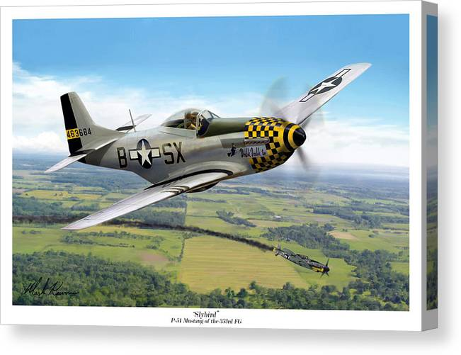 Aviation Canvas Print featuring the painting Slybird by Mark Karvon