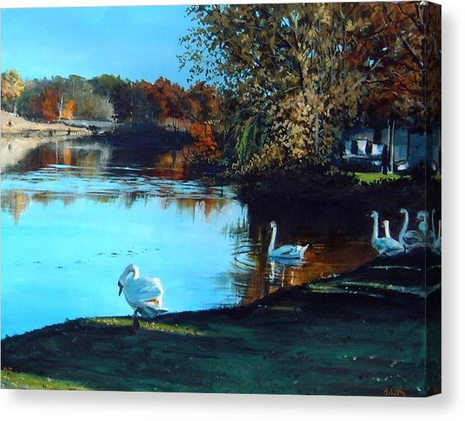 Pond Canvas Print featuring the painting Mill Pond by William Brody