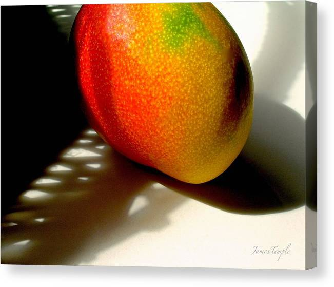 Good Morning Sunshine Canvas Print featuring the photograph Good Morning Sunshine by James Temple