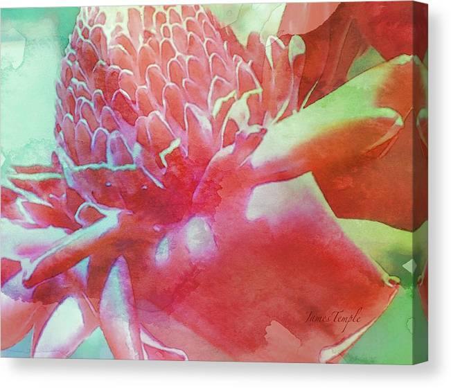Hawaii Calling Canvas Print featuring the digital art Hawaii Calling by James Temple