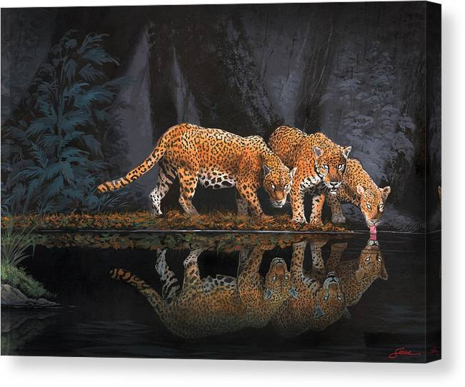 #leopards Canvas Print featuring the painting A Cool Drink by Harold Shull